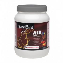 A18 Lori nutribird