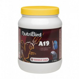 A19 nutribird