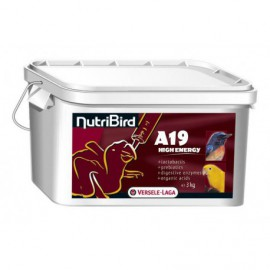 A19 High Energy nutribird