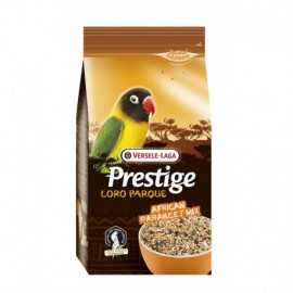 African Parakeet Mix prestige loro parque