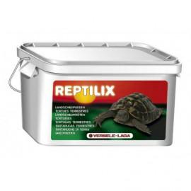 Schildpad reptilix