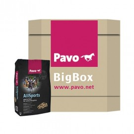 All-Sports Big Box 725 kg Pavo