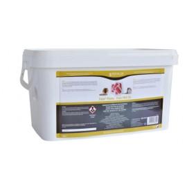 Fatal pasta pro  3kg Edialux
